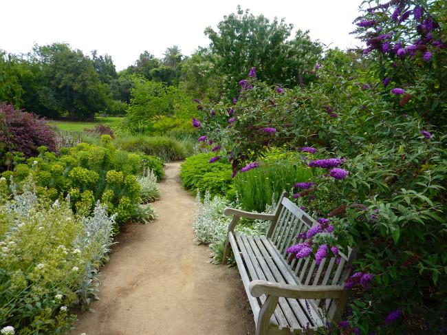Arcadia Arboretum