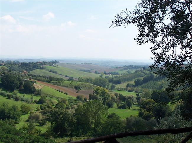 Siena view 4