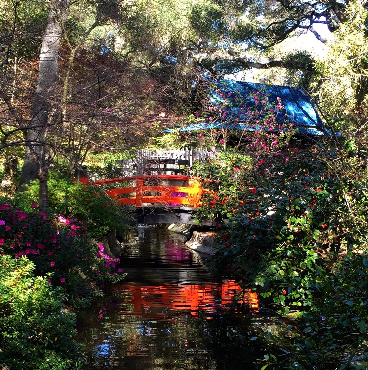 Descanso Gardens La Ca Ada Flintridge Travels With Mai Tai Tom