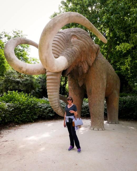 1 ELEPHANT - PARK