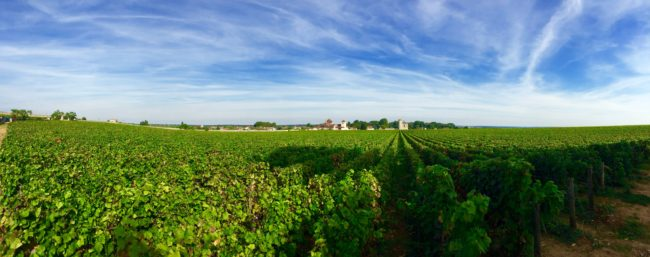 routes-des-grand-crus-burgundy-france-1