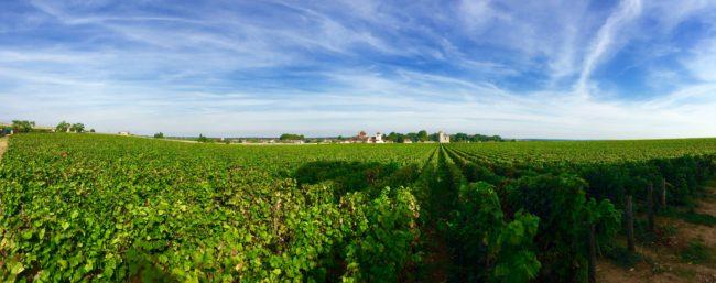 routes-des-grand-crus-burgundy-france-1